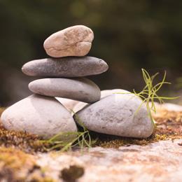 Stones (1)